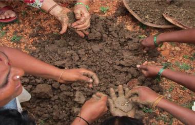 Creation of the Land Healer Foundation